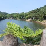 jianghewang1