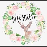 deerforest314