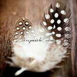 voguish_chic