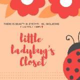 little_ladybugs_closet