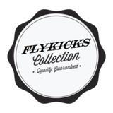flykick_sg