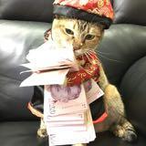 meowmeeooww