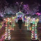 anness_chong