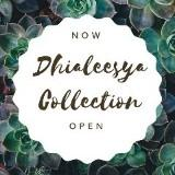 dhiyaleesyacollection