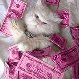 pinkdollarsboutique