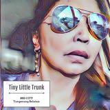 tinyllittletrunk