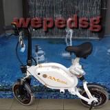 wepedsg