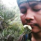 aris_munandar888