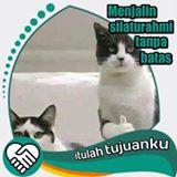 ichalan