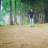 ari_luthfi