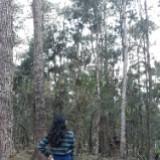 clarabonitaa