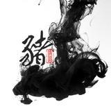 shinan99