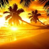 sunshinex0