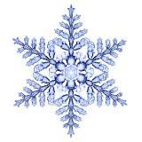 snow_xuexue