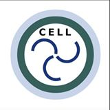 cell310