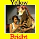yellowbrightsales