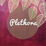plethora_ph