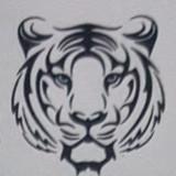 tigerdebtrecovery