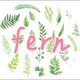 fern.twshop