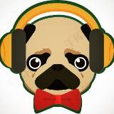 headphone_pug