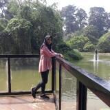 arinasalsa_