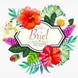 briel.ph