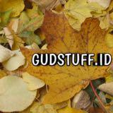 gudstuff.id