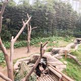karennavarra