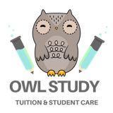 owlstudy