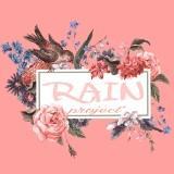 rain_project1st