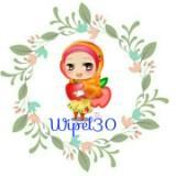 wipel30