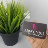 itsberrynice_android