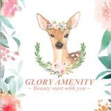glory_amenity
