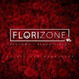 florizonemy