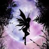 fairyyyshop