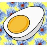 egg.co