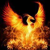 phoenixgal