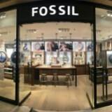 fossil_