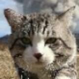 kittycat789