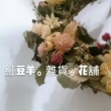 yang6464