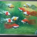 birdbird2.bl