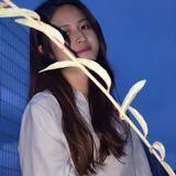 zheyin