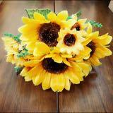 sunflower_gal