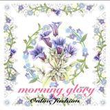 morning_glory_online