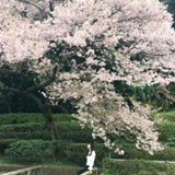 chloe_leung_