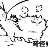 princesscatcat