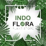 indofloraofficial