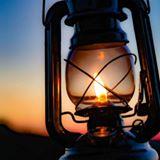 lampsbyjulia
