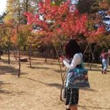 yhy_angela