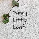 funnylittleleaf